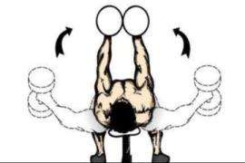 胸大肌怎样磨炼