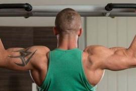 新手练胸肌应当练什么